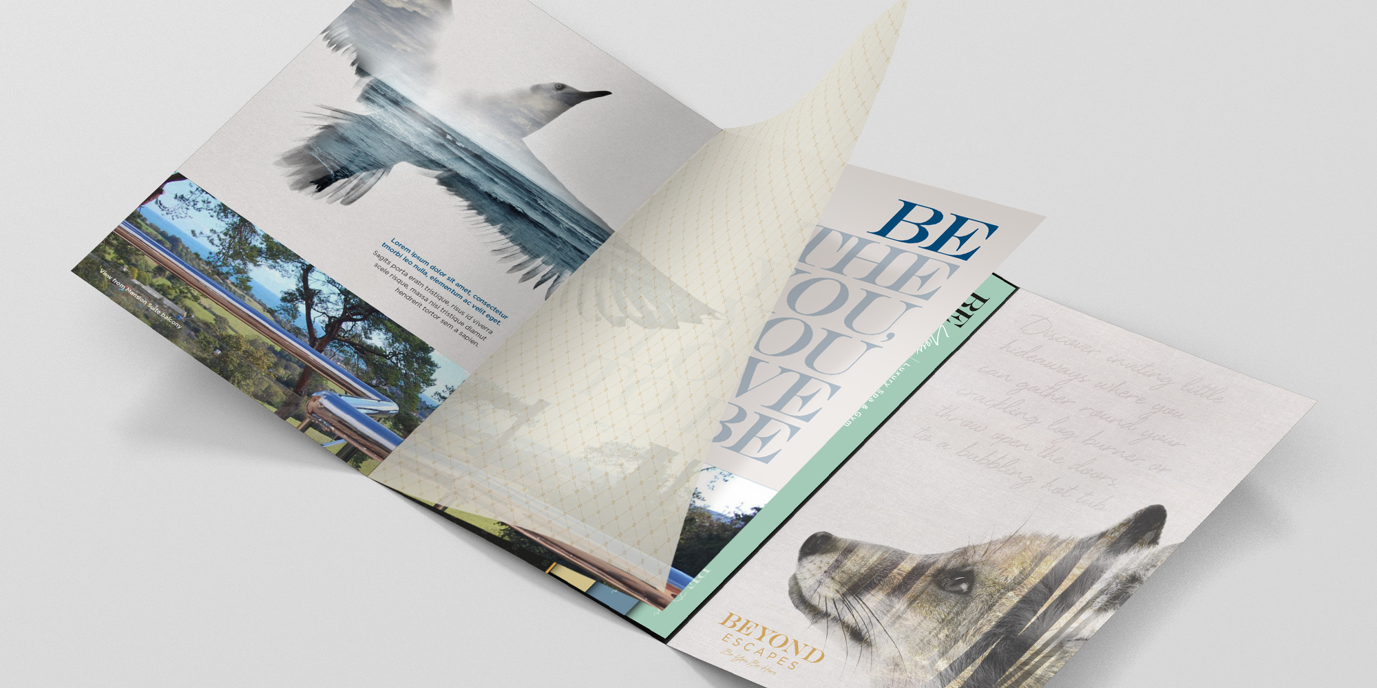 BE Devon Brochure